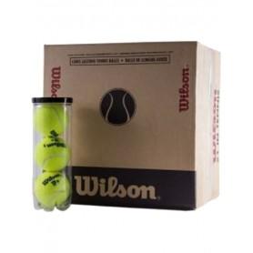 PELOTAS CAJON WILSON TP - 16 BOTES  ,3 BOLAS