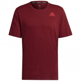 Adidas Camiseta City Elevated Rojo